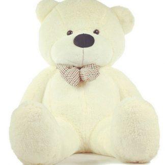 Geschiedenis Teddyberen